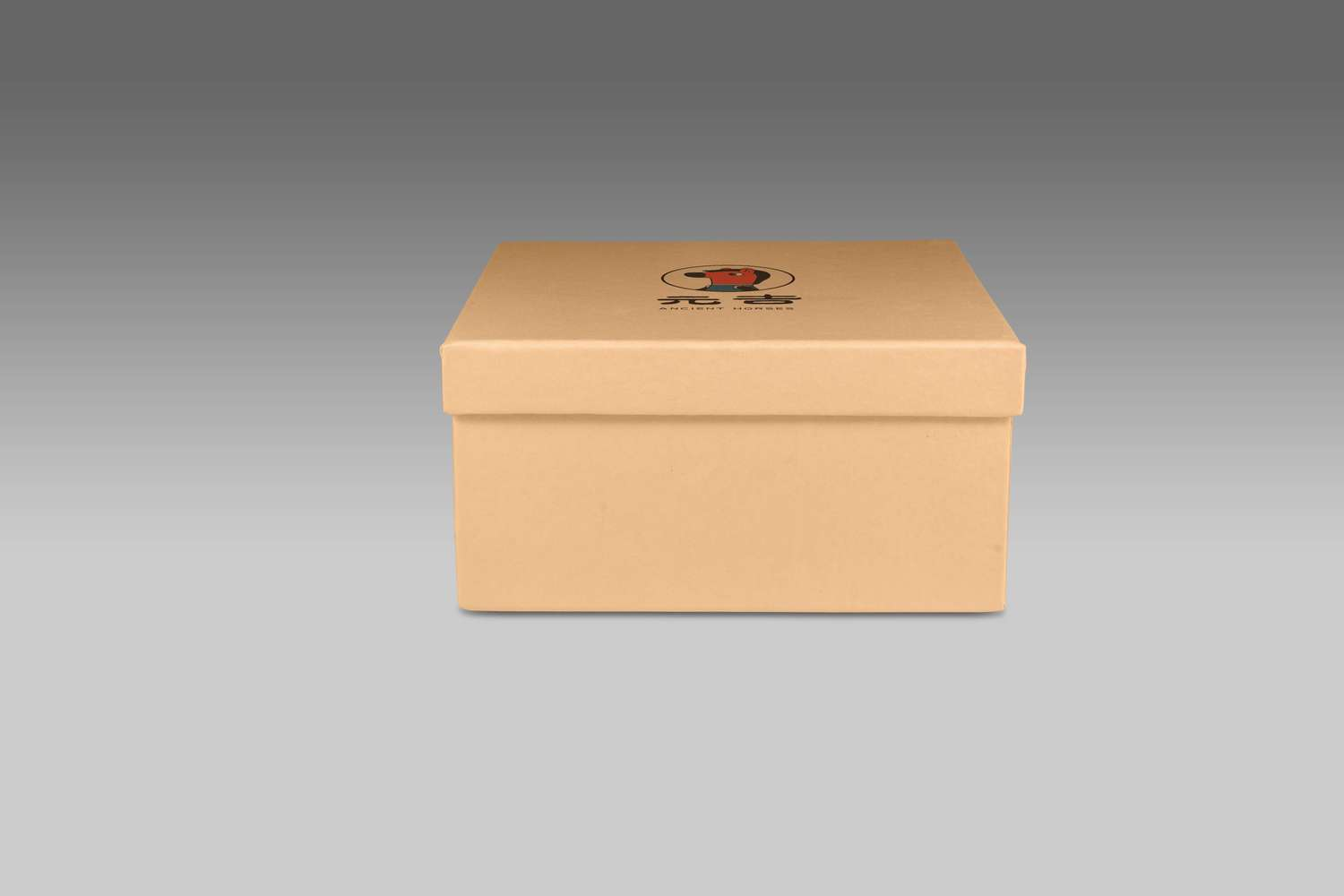 box and logo mockup vol 2 - 04.jpg